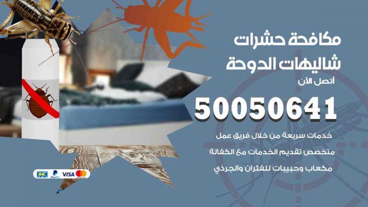مكافحة حشرات شاليهات الدوحة / 50050647 / شركة مكافحة الحشرات والقوارض
