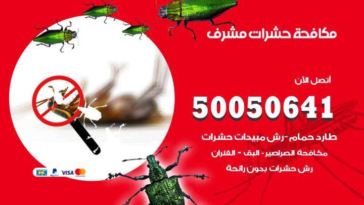 مكافحة حشرات مشرف / 50050647 / شركة مكافحة الحشرات والقوارض
