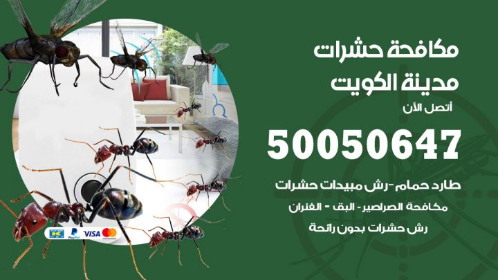 رقم مكافحة حشرات وقوارض العاصمة / 50050647 / شركة رش حشرات خصم 50%