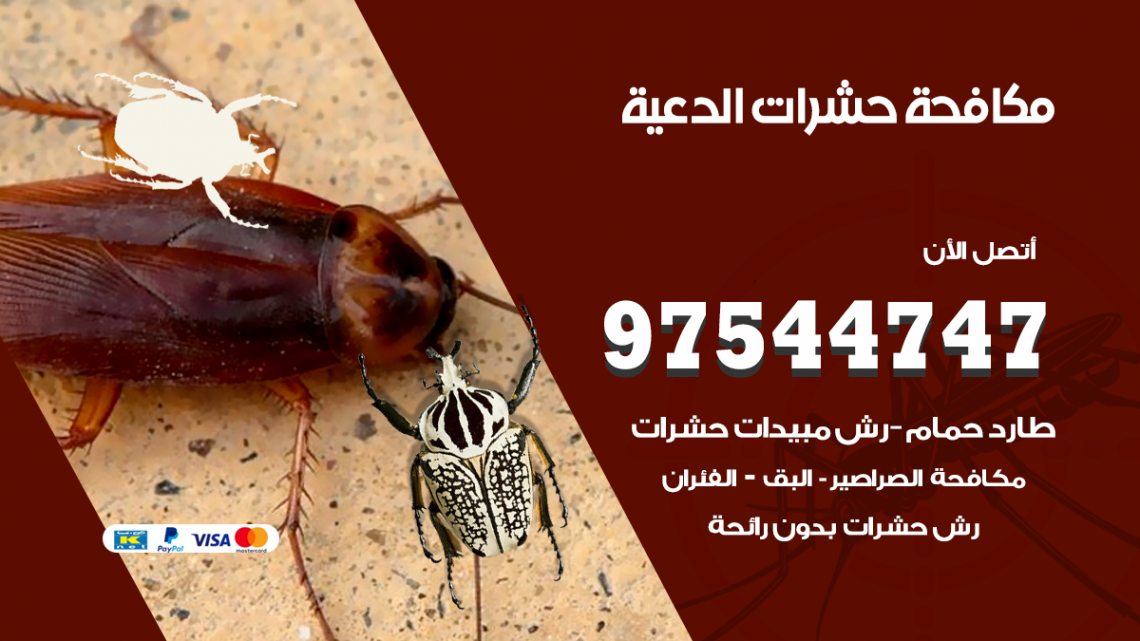 رقم مكافحة حشرات وقوارض الدعية / 50050647 / شركة رش حشرات خصم 50%