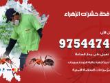 رقم مكافحة حشرات وقوارض الزهراء