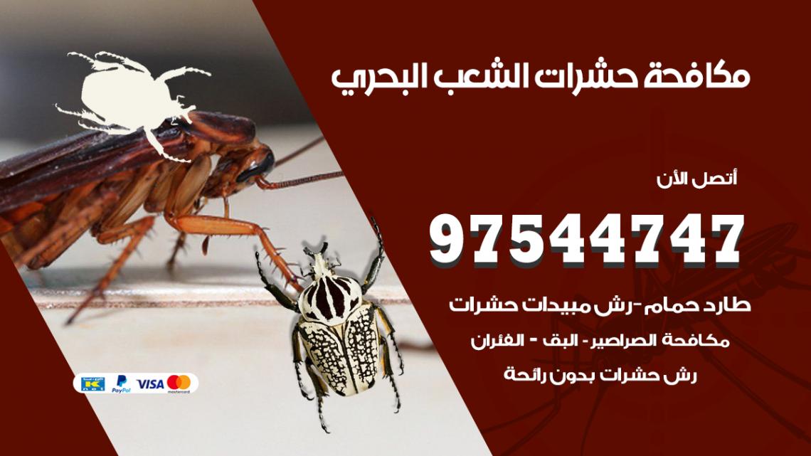 رقم مكافحة حشرات وقوارض الشعب البحري / 50050647 / شركة رش حشرات خصم 50%