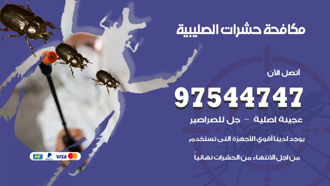 رقم مكافحة حشرات وقوارض الصليبية / 50050647 / شركة رش حشرات خصم 50%