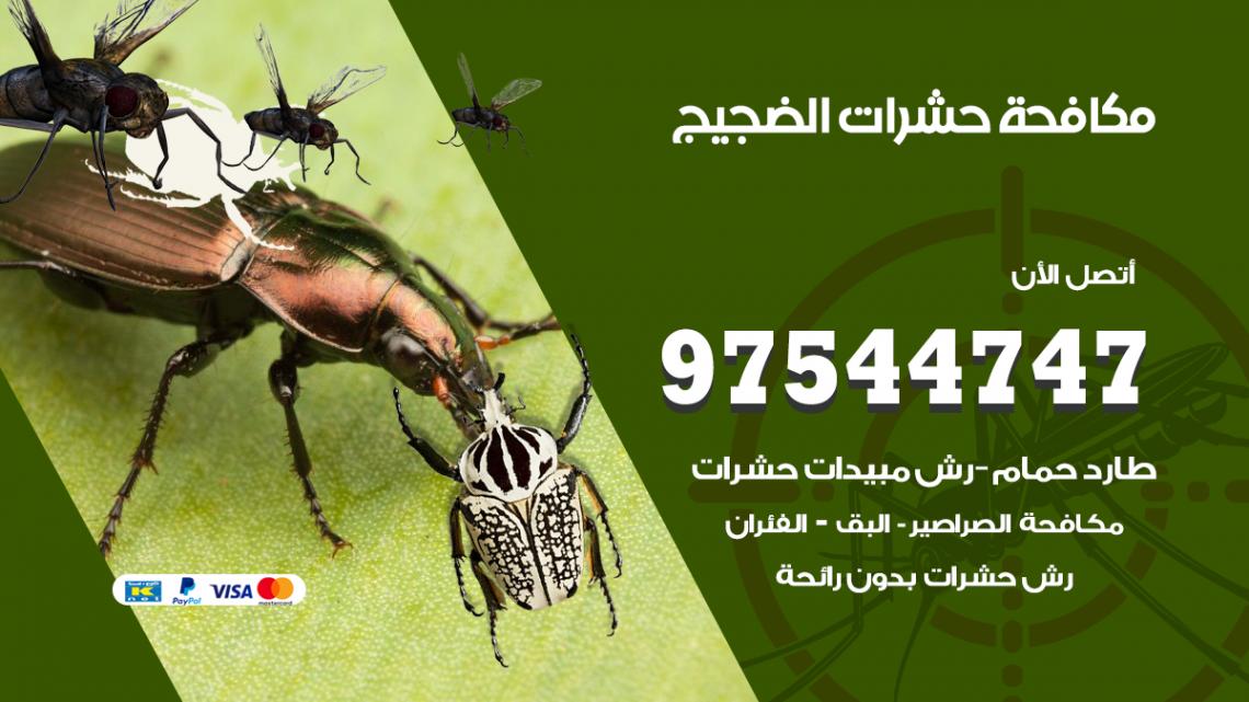 رقم مكافحة حشرات وقوارض الضجيج / 50050647 / شركة رش حشرات خصم 50%