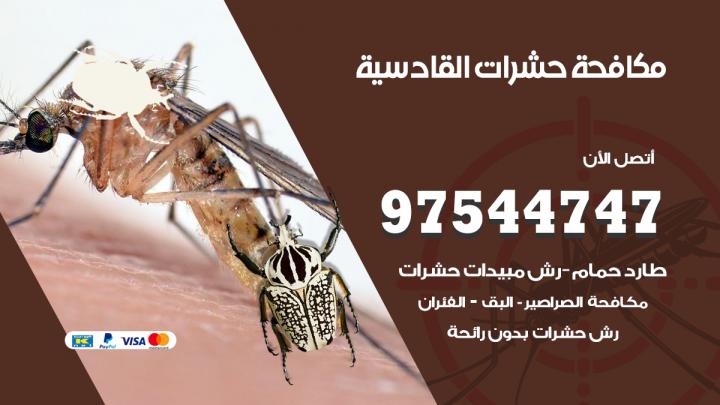 رقم مكافحة حشرات وقوارض القادسية / 50050647 / شركة رش حشرات خصم 50%