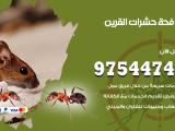 رقم مكافحة حشرات وقوارض القرين