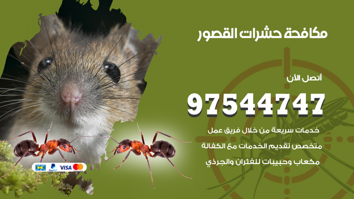 رقم مكافحة حشرات وقوارض القصور / 50050647 / شركة رش حشرات خصم 50%