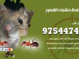 رقم مكافحة حشرات وقوارض القصور