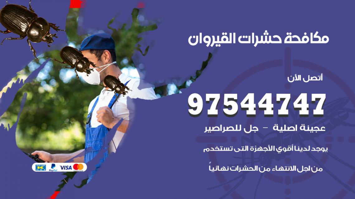 رقم مكافحة حشرات وقوارض القيروان / 50050647 / شركة رش حشرات خصم 50%