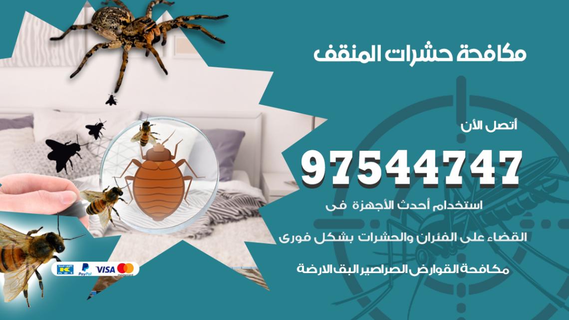 رقم مكافحة حشرات وقوارض المنقف / 50050647 / شركة رش حشرات خصم 50%