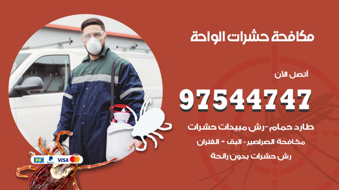 رقم مكافحة حشرات وقوارض الواحة / 50050647 / شركة رش حشرات خصم 50%