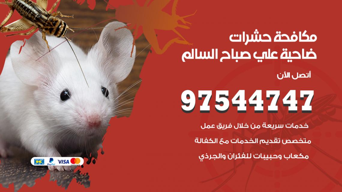 رقم مكافحة حشرات وقوارض ضاحية علي صباح السالم / 50050647 / شركة رش حشرات خصم 50%