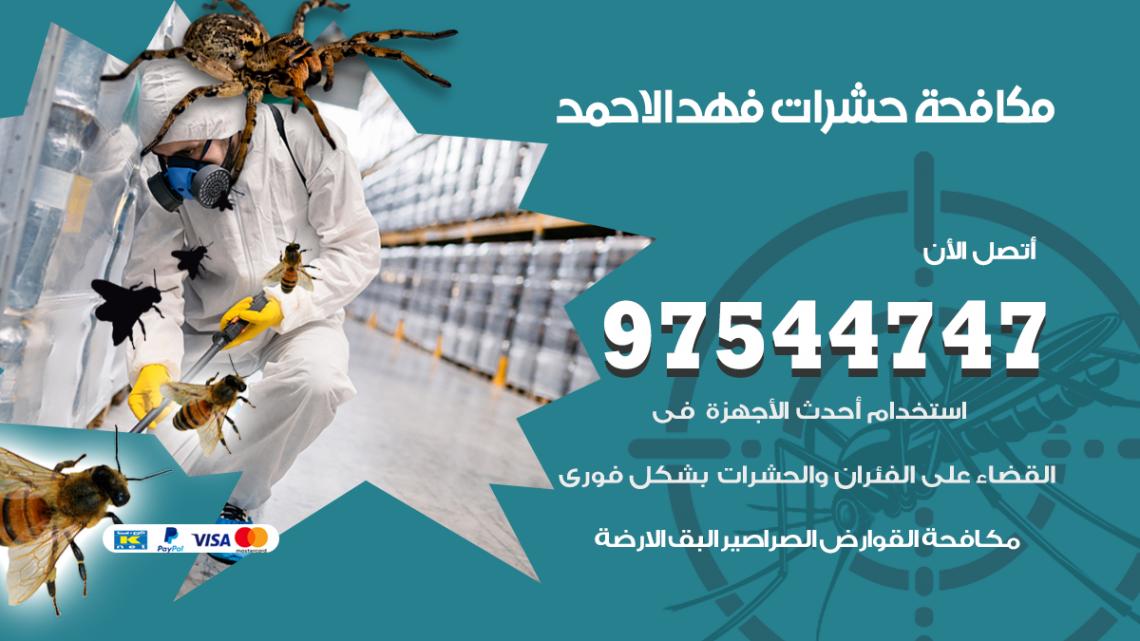 رقم مكافحة حشرات وقوارض فهد الاحمد / 50050647 / شركة رش حشرات خصم 50%