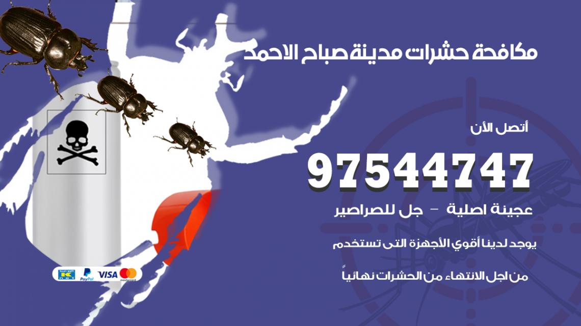 رقم مكافحة حشرات وقوارض مدينة صباح الاحمد / 50050647 / شركة رش حشرات خصم 50%