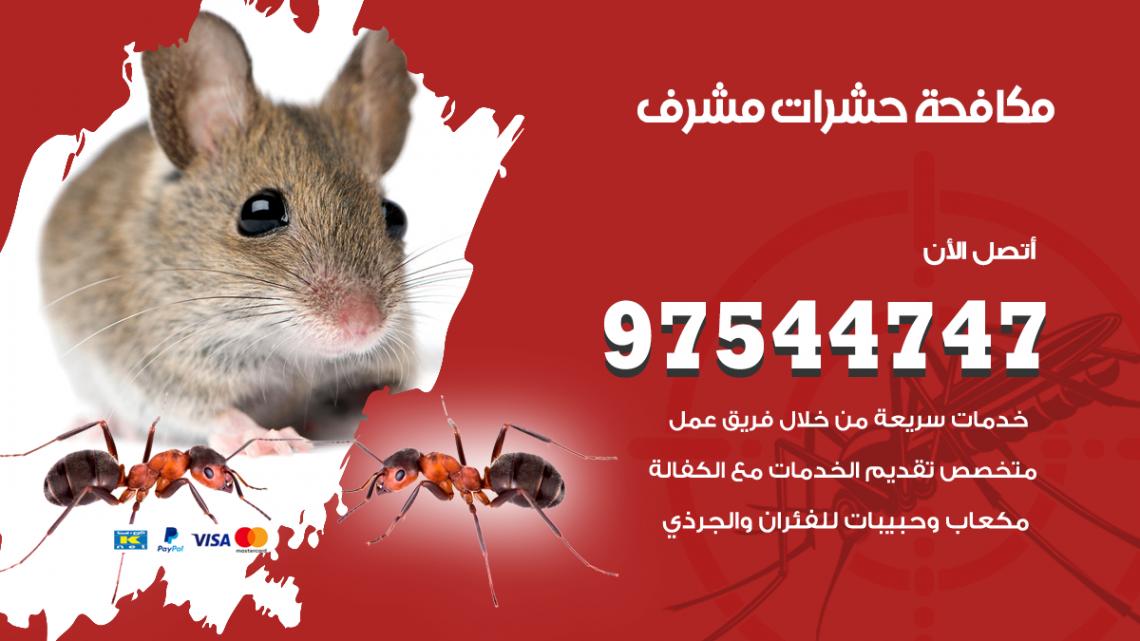 رقم مكافحة حشرات وقوارض مشرف / 50050647 / شركة رش حشرات خصم 50%